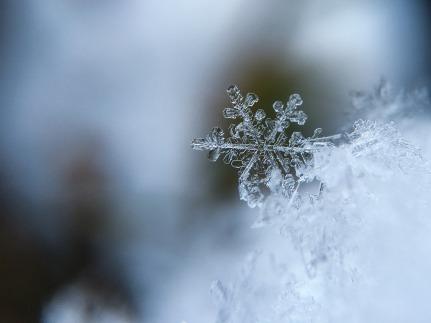snowflake-1245748_1280.jpg