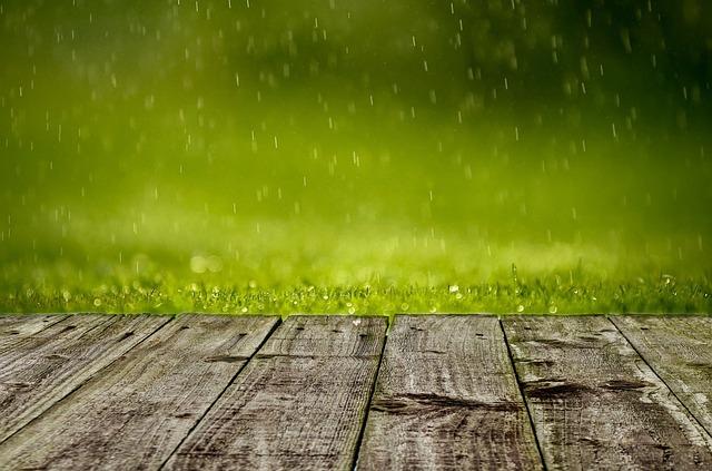 spring-316539_640.jpg